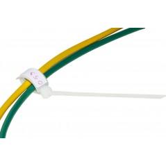SCHEDA DI RETE NANO USB WIRELESS N 150MBPS